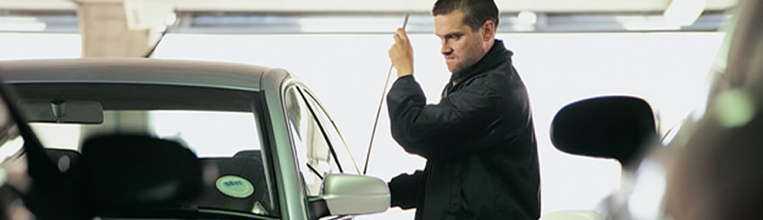 How to Safeguard Your Vehicles from Being Stolen?